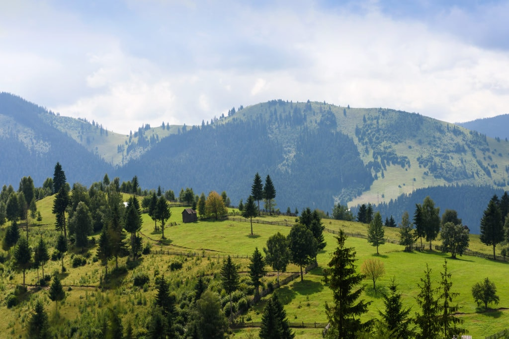 Mountain Landscape In Bucovina With Green Fields