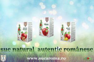 Suc Natural Autentic Romanesc Fabricat In Romania Produse Romanesti