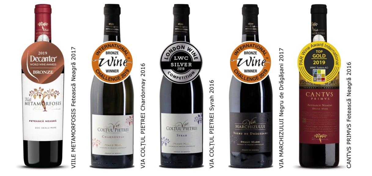 Vitis Metamorfosis O Poveste De Succes Cu și Despre Vin