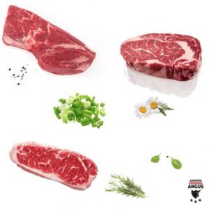 Care Ar Fi Beneficiile Pentru Care Alegi Sa Comanzi Pachete Cu Carne De Vita Premium Angus De La Karpaten Meat Sibiu